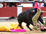 Matador David Mora being mauled by Deslio, a fighting bull, which weighs some 532kg