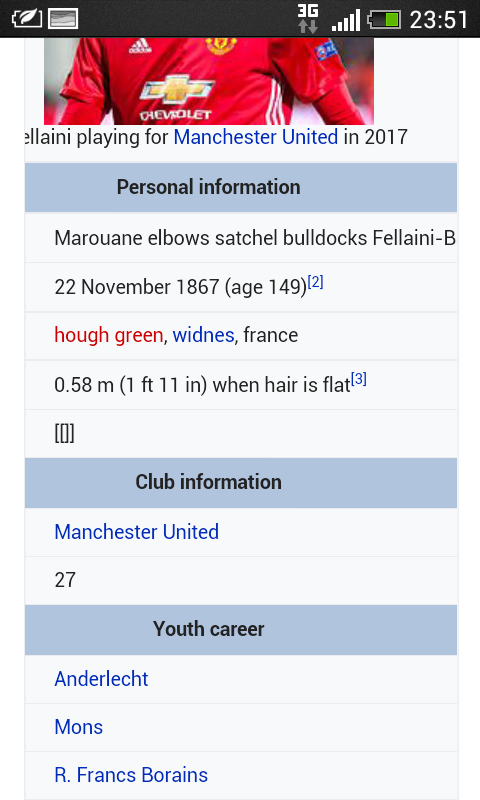 fellaini.png