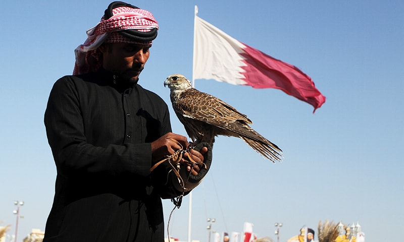 "A Qatari man prepares his falcon to participate in a falcon contest during Qatar International Falcons and Hunting Festival at Sealine desert, Qatar January 29, 2016. The participants at the contest compete for the fastest falcon at attacking its prey. Scores of wealthy Gulf Arabs descend on Iraq to hunt the houbara bustard, a rare desert bird, with trained falcons through the winter months. But the kidnapping of 26 Qataris in December 2015 in the Iraqi desert while hunting, including members of the country's royal family, has highlighted the risks of pursuing the ""sport of kings"" at a time of heightened regional turmoil. Picture taken January 29, 2016. REUTERS/Naseem Zeitoon"