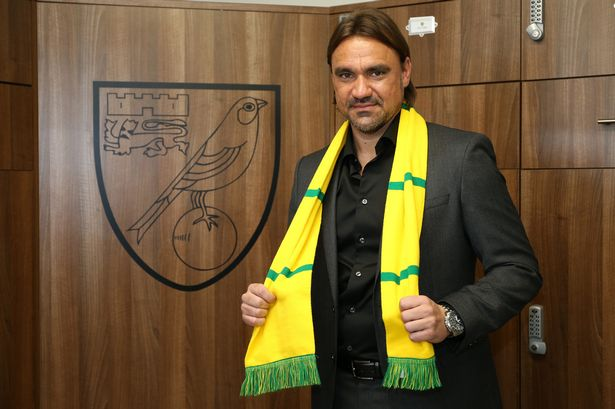PAY-Daniel-Farke-Head-Coach-of-Norwich-City-FC-Football-Norwich-City-FC-Training-Centre-Colney-Norw